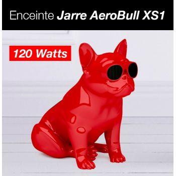 Enceinte Jarre AeroBull XS1...
