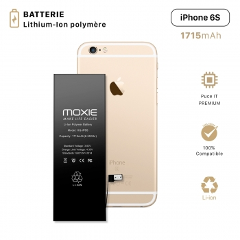 Batterie pour iPhone 6S...