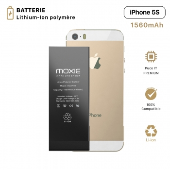 Batterie pour iPhone 5S...